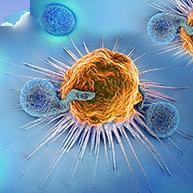 4 février : Journée mondiale de lutte contre le cancer